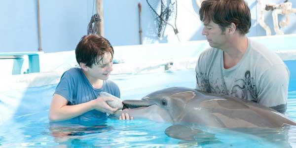 Dolphin film gay