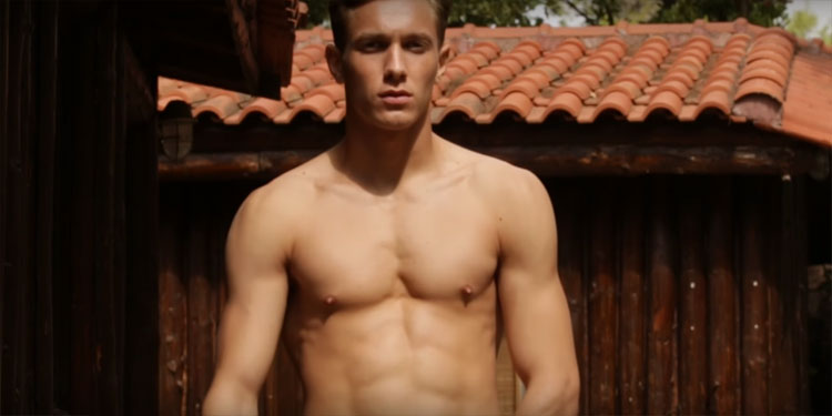 Movie Reviews - Gay Themed: Cover boy: Lultima